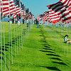 2,977 Flags, One for Each Victim's Country of Origin - University of Pepperdine's Memorial to 9/11 Victims, Saturday, September 11, 2010