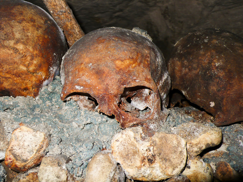 A hyuman school is highlighted against thousands of other bones in the ossuary of the Catacombs under the streets of Paris, France. This skull has yellowed with age relative to the concrete it is set into.