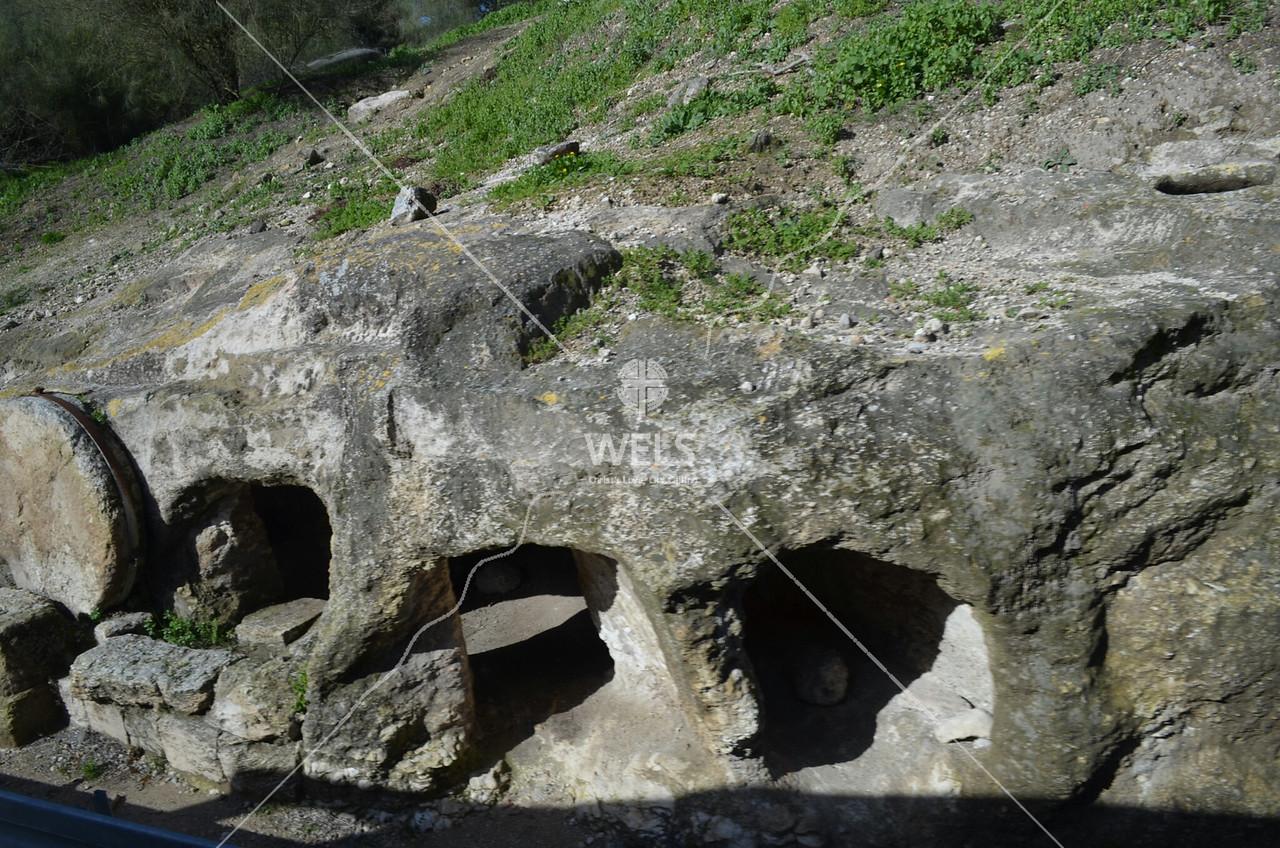 Mt. Carmel - Tombs on the road to Mt. Carmel in Galilee by kdraper