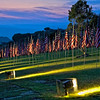 Lighted Flags at Dusk