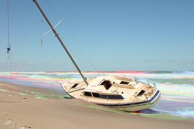 Palm Bay (Sandy Tambone)