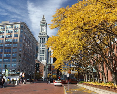 Fall Scenes from Boston (Sandy Tambone)