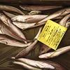 Fish Market - European Hake