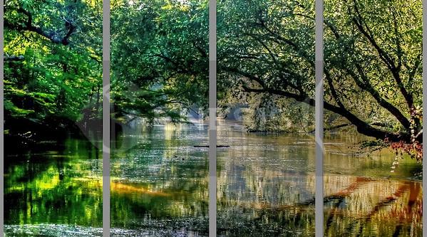 Big Cypress River 4 panels