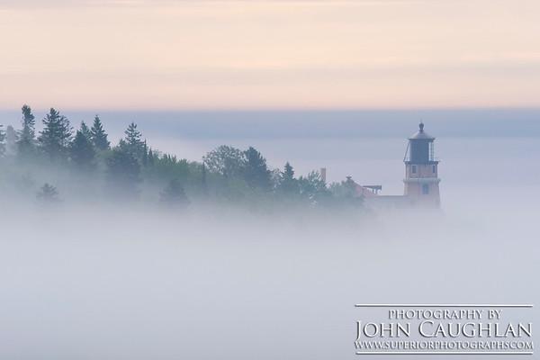 SRLH(fog3p)