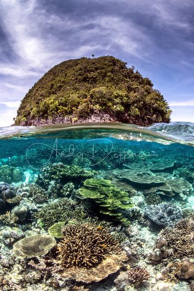 Above & Below in Raja Ampat, Indonesia
