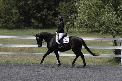 Spokane Sport Horse Dressage Show