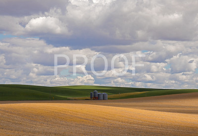 Views along Steptoe Butte, Colfax, WA