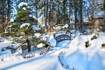 Wintery Japanese Gardens