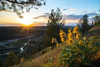 High Drive Sunset