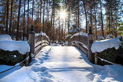 Japanese Gardens Snowy Bridge
