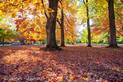 October 4 (Jenna, Karsen, & Corbin Park) 483-Edit
