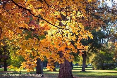 October 4 (Jenna, Karsen, & Corbin Park) 503-Edit