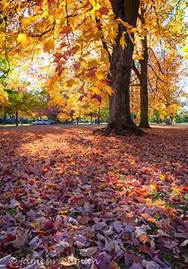October 4 (Jenna, Karsen, & Corbin Park) 484-Edit