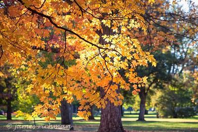 October 4 (Jenna, Karsen, & Corbin Park) 502-Edit
