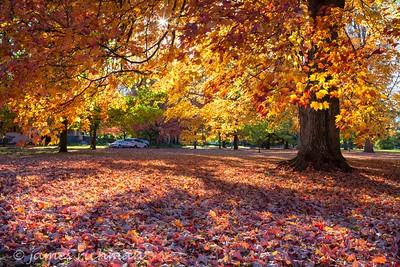 October 4 (Jenna, Karsen, & Corbin Park) 470-Edit