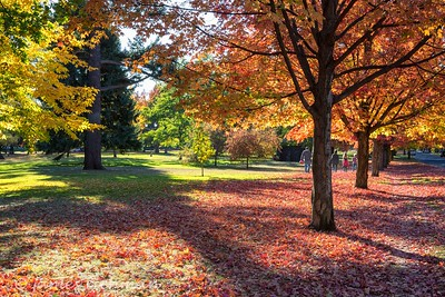 October 4 (Jenna, Karsen, & Corbin Park) 443-Edit