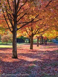 October 4 (Jenna, Karsen, & Corbin Park) 425-Edit-2