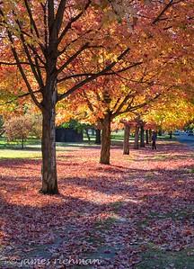 October 4 (Jenna, Karsen, & Corbin Park) 425-Edit
