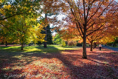 October 4 (Jenna, Karsen, & Corbin Park) 444-Edit