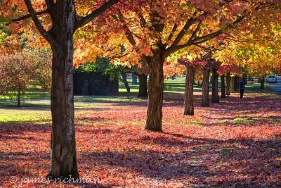 October 4 (Jenna, Karsen, & Corbin Park) 423-Edit