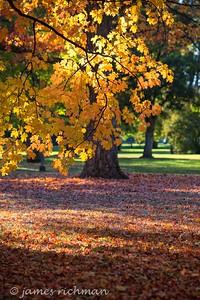 October 4 (Jenna, Karsen, & Corbin Park) 505-Edit