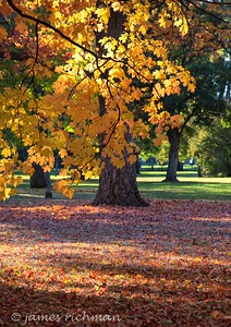 October 4 (Jenna, Karsen, & Corbin Park) 507-Edit