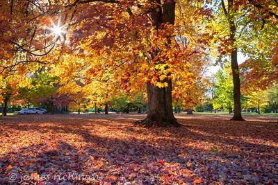 October 4 (Jenna, Karsen, & Corbin Park) 477-Edit