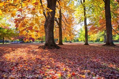 October 4 (Jenna, Karsen, & Corbin Park) 480-Edit