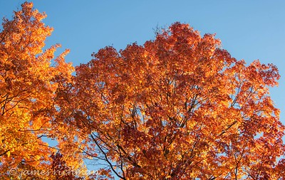 October 4 (Jenna, Karsen, & Corbin Park) 514-Edit
