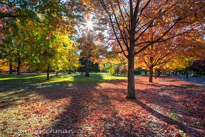 October 4 (Jenna, Karsen, & Corbin Park) 452-Edit