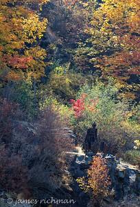 October 6 (Land Expressions 7D) 016-Edit