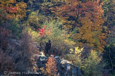 October 6 (Land Expressions 7D) 023-Edit