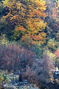 October 6 (Land Expressions 7D) 020-Edit