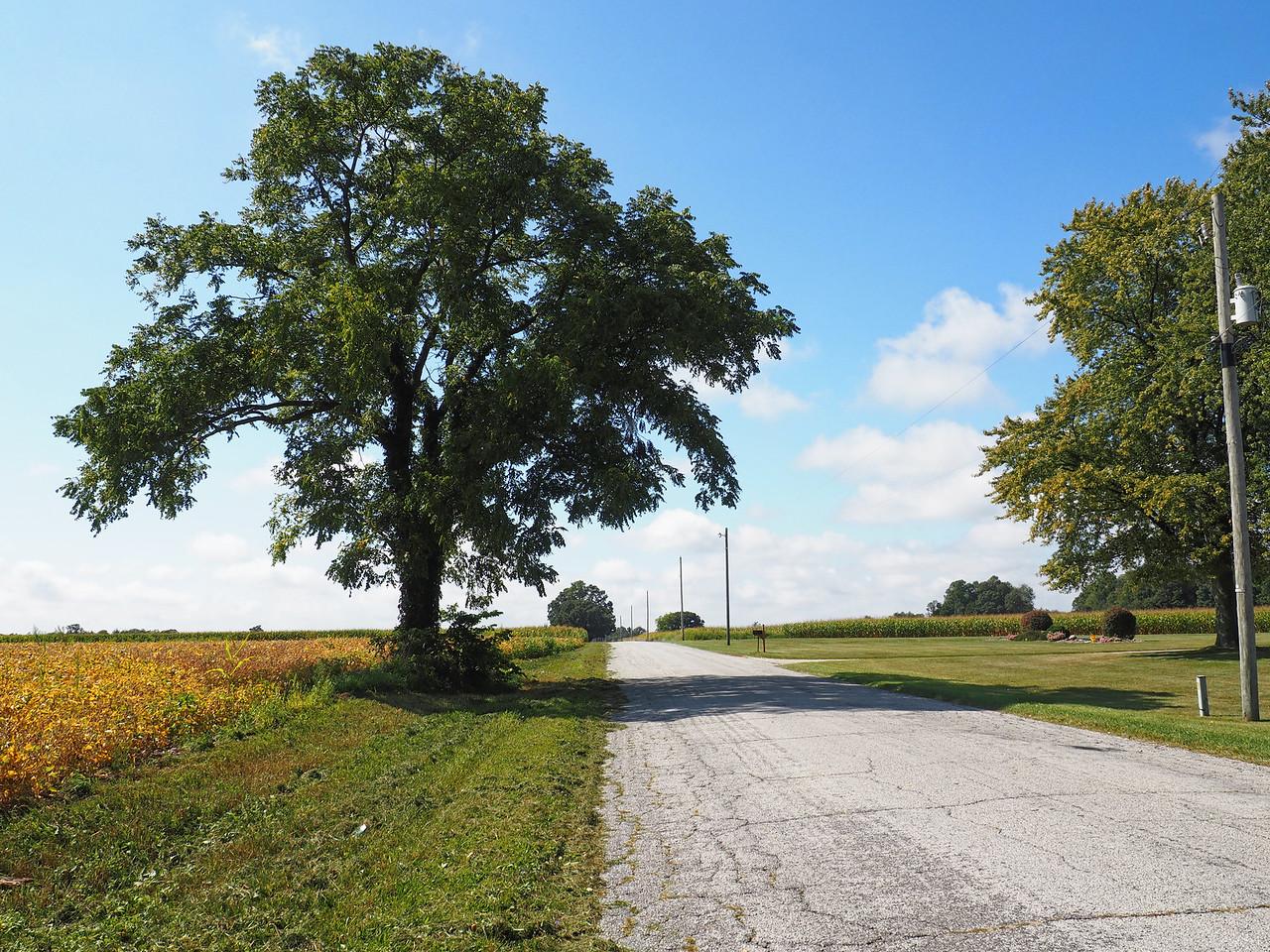 Not Michigan Road lands