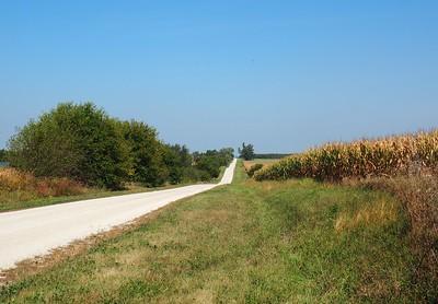 Wempletown Road