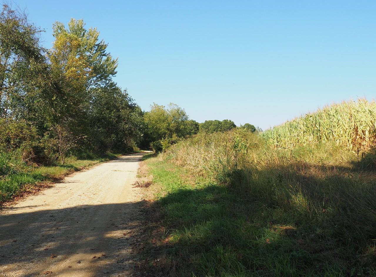Pine River Trail