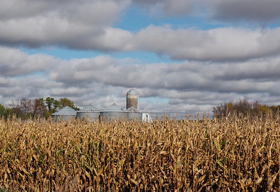 Corn, Drying Bins, and Silo
