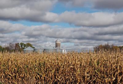 Corn, Drying Bins, and Silo