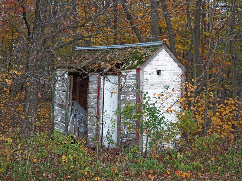 Outhouse for Leaf River Town Hall
