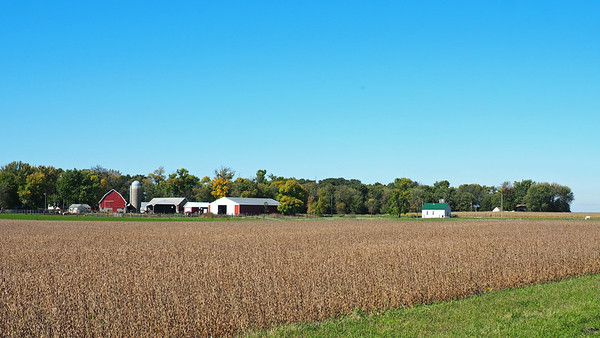 North of Arlington on 401st Avenue. The Green Isle township hall can be seen to the right of the farmstead.