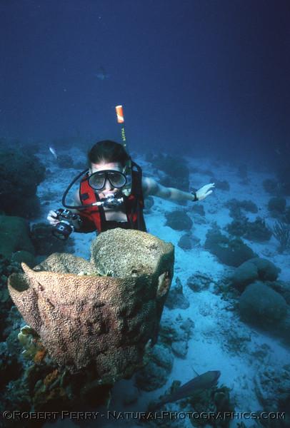Sue & sponge Log 1127 1985-08 Bonaire-001