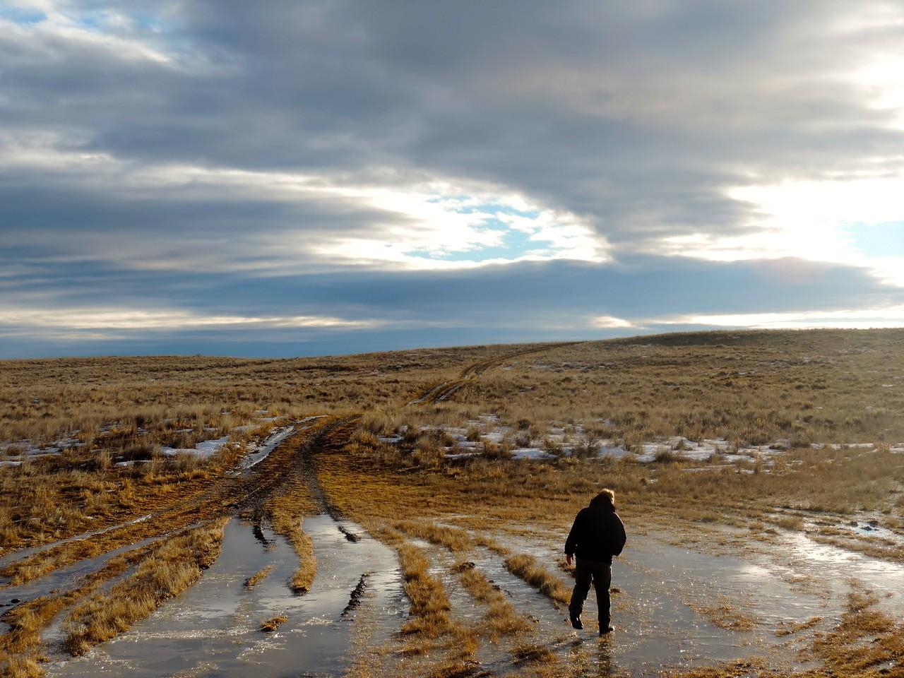Zach McKeown hiking a transect on APR (photo by Caroline Hedin