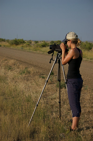 Anna Strong scoping for bison. PHOTO BY JONAH GULA