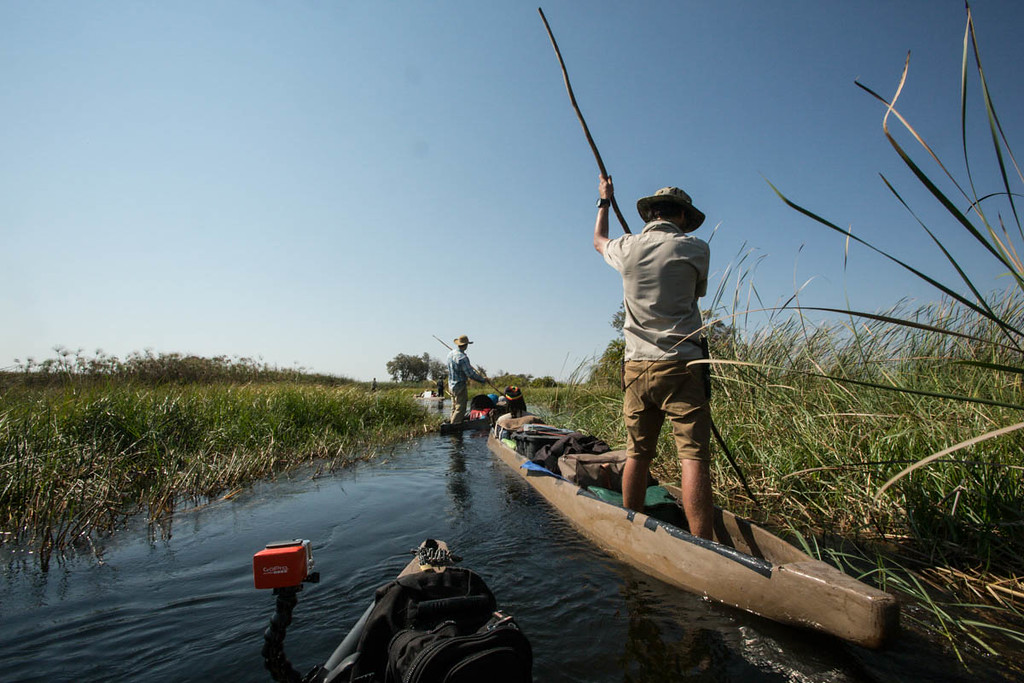 Steve Boyes and Gregg Treinish pole mokoros through the Okavango Delta, Botswana, during an exploratory mission across the newest UNESCO World Heritage Site. The delta is threatened by development upstream in Namibia and Angola, and Adventurers and Scientists for Conservation is working alongside the Okavango Wilderness Project, to place remote research platforms throughout the delta to monitor the health of this habitat.