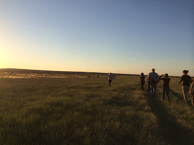 Summer days are long on the Great Plains. Here, the June 2014 Adventurers and Scientists for Conservation Landmark volunteer crew takes an evening walk out to the prairie dog town after a day spent collecting wildlife data on the American Prairie Reserve. Learn how to join a crew at www.adventurescience.org/landmark.