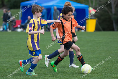 2015 09 06 Wests Junior Soccer tourny