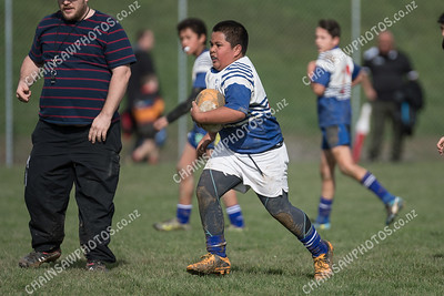 19 August 2017 Northern United Titans v Avalon, Wellington Under 12 club rugby at Aotea College