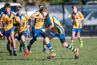 31 July 2021 Paremata-Plimmerton Hammerheads v Paraparaumu Cobras Under 13 rugby Ngati Toa Domain, Porirua