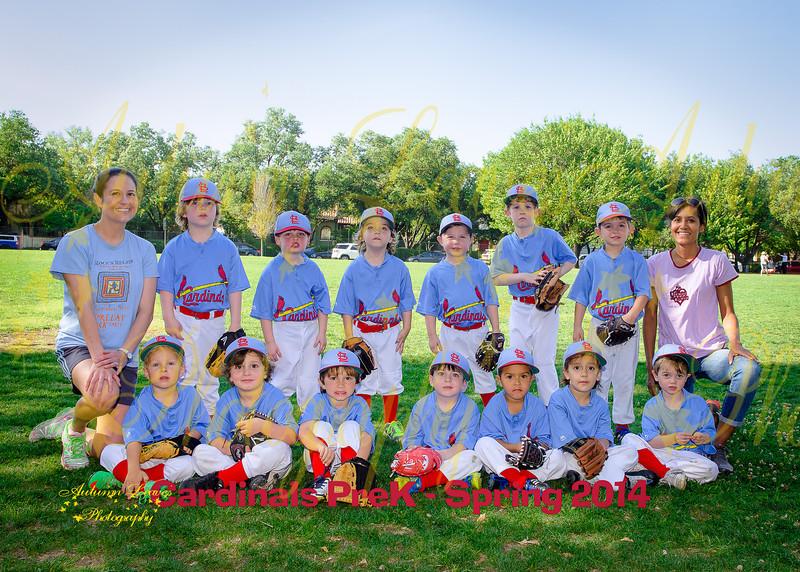 Cardinals-69-20140519-Edit